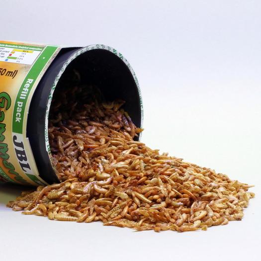 JBL GAMMARUS REFIL 750 ml