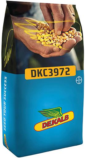 KORUZA DKC 3972 50 MK Acceleron Elite
