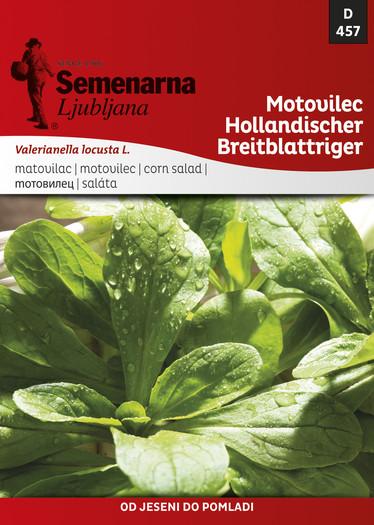 MOTOVILEC HOLANDSKI/Hollandischer breitblattriger